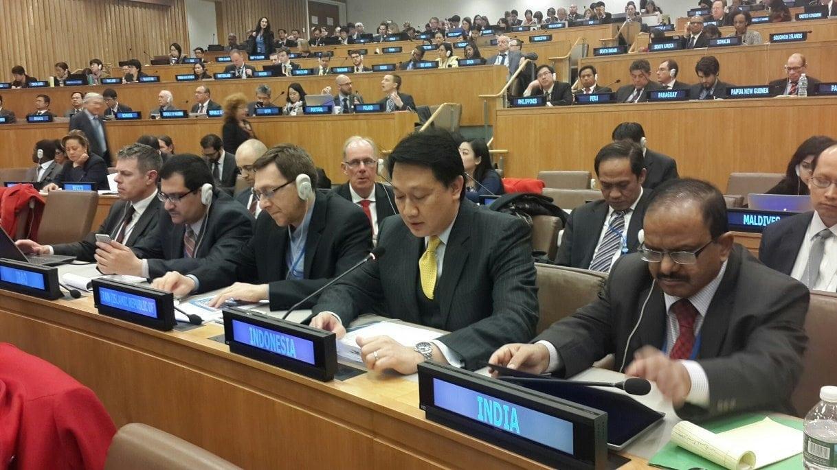 Deputi Havas Pimpin Delegasi Indonesia Pada Pertemuan BBNJ di PBB