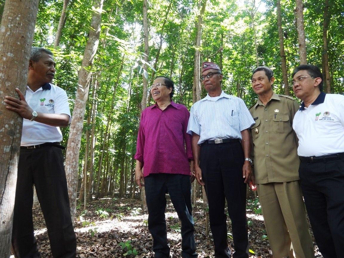 Sambangi Hutan Rakyat Labuan Bajo