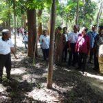 Menko Rizal Mengunjungi Hutan Rakyat di Labuan Bajo2