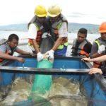 9.KJA. PT . Suri Tani Pemuka menggunakan Lift up system utk menyedot ikan mati dan kotoran di dasar keramba