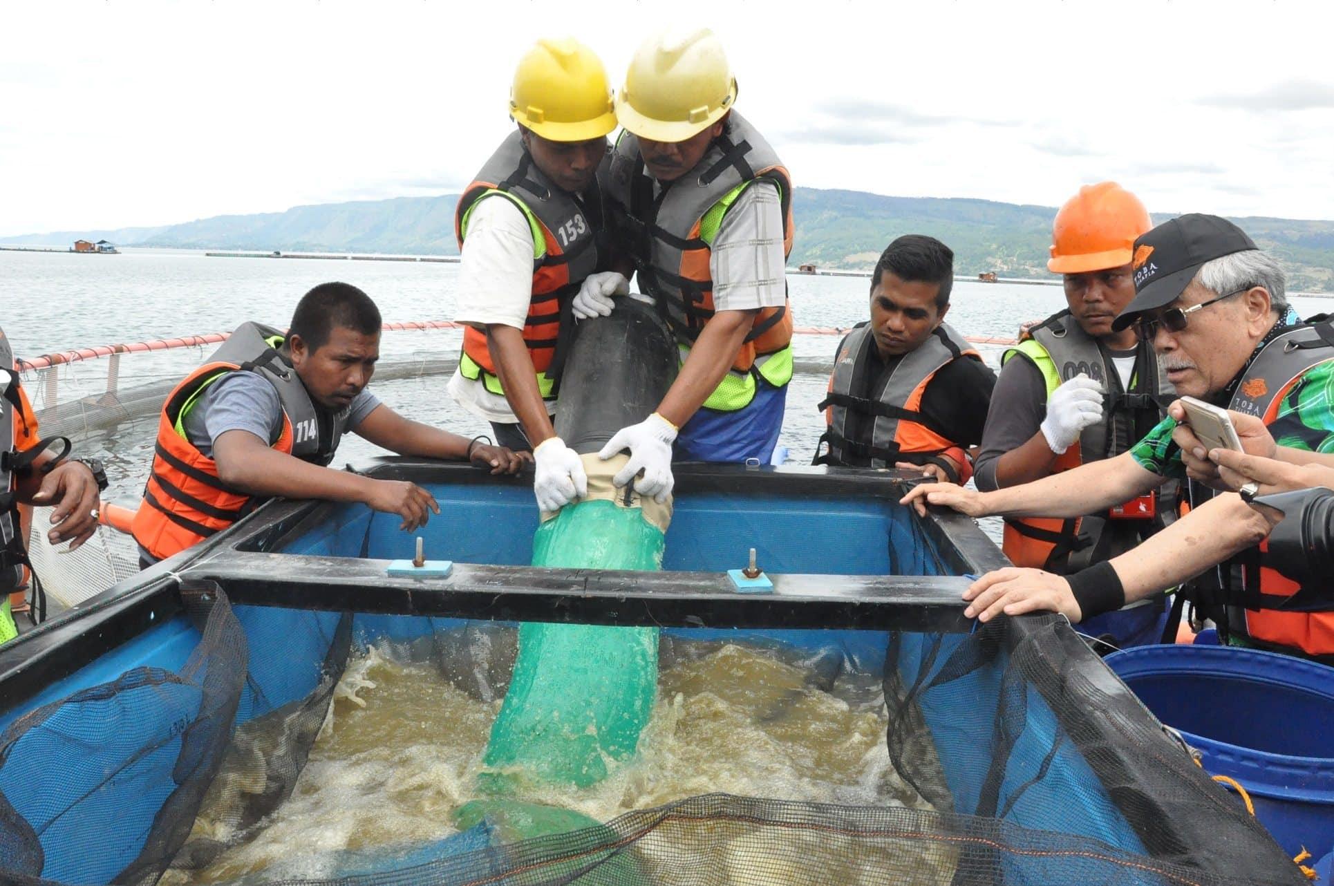 Tinjau Keramba Ikan Guna Memajukan Pariwisata Danau Toba