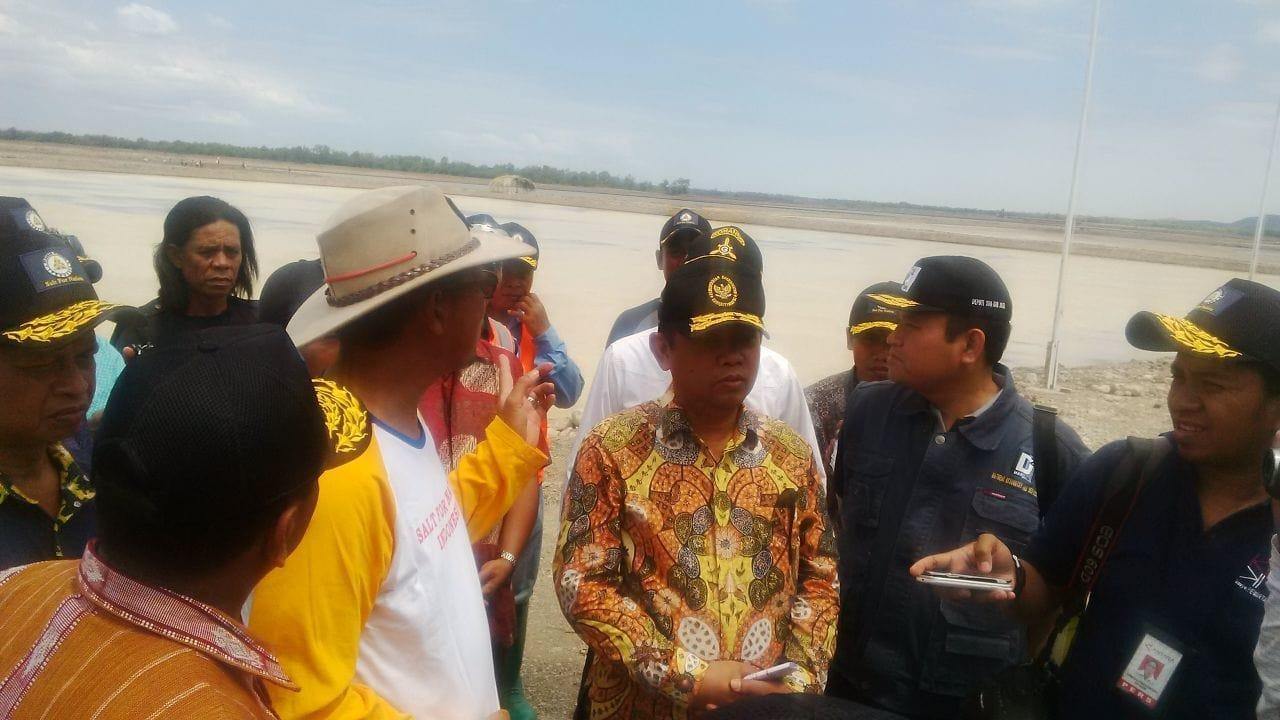 Deputi II Kemenko Maritim Tinjau Tambak Garam Bipolo di PT Garam di Bipolo Kupang