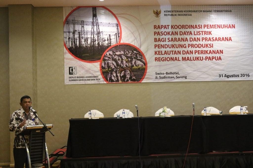 Kemenko Maritim Fokuskan Pembangunan Infrastruktur Listrik Untuk Regional Maluku – Papua