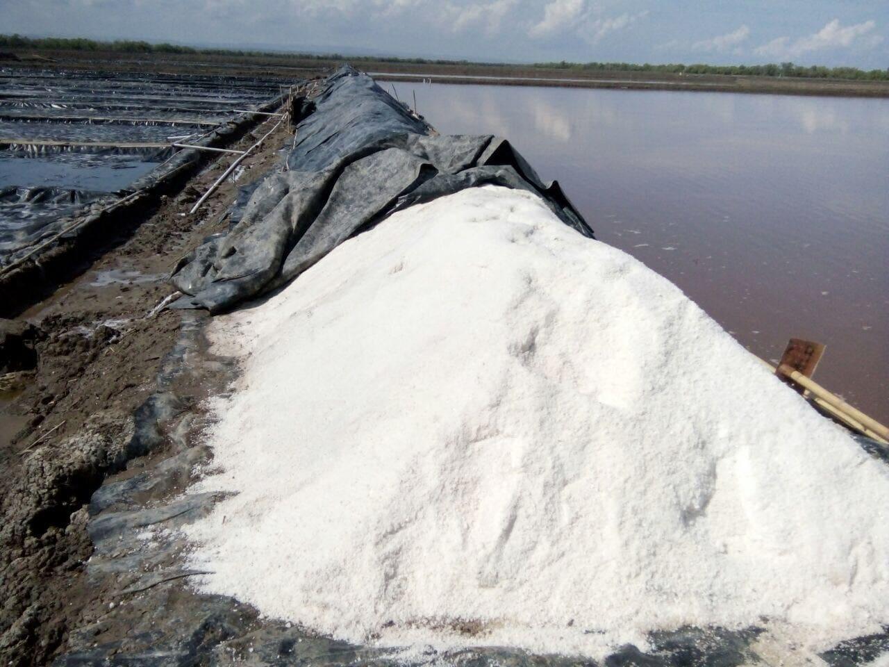 Fasilitasi Swasembada Garam, Pemerintah Dirikan Sistem Resi Gudang