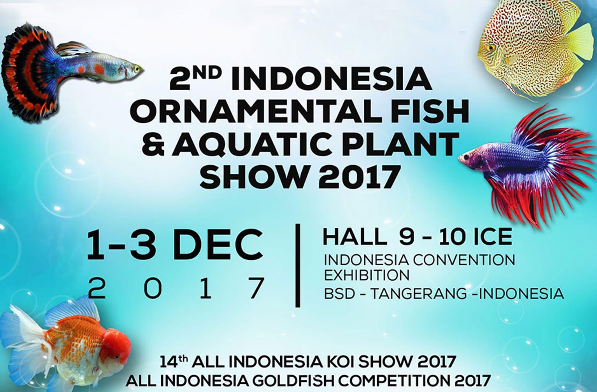 Nusatic 2017 Siap Digelar 1-3 Desember Mendatang