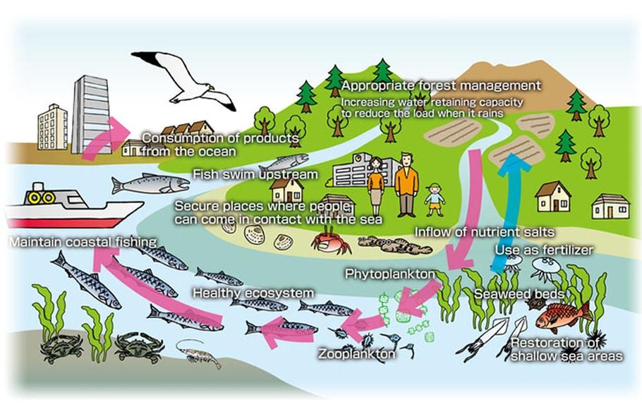 IPTEK Untuk Pengembangan Wisata Bahari dan Pengelolaan Kawasan Pesisir