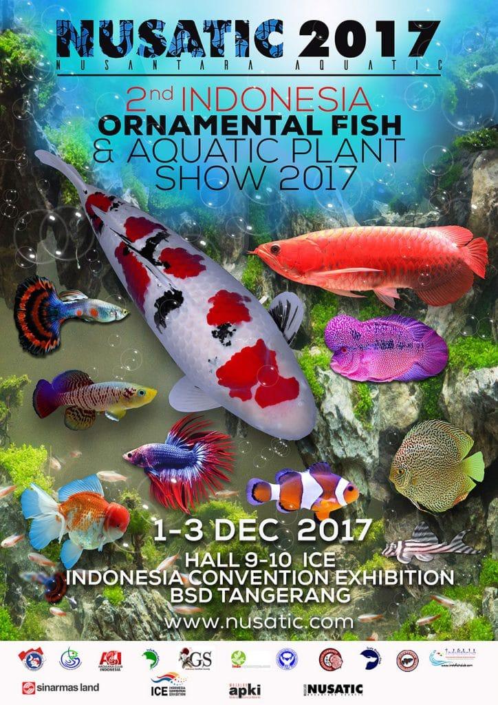 Indonesia Berpotensi Pimpin Pasar Ikan Hias Internasional
