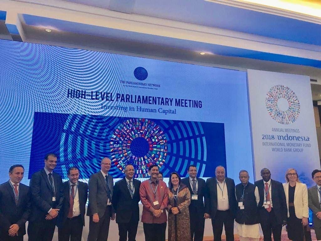 Menko Luhut Menjadi Keynote Speech dalam High Level Parliamantary Meeting