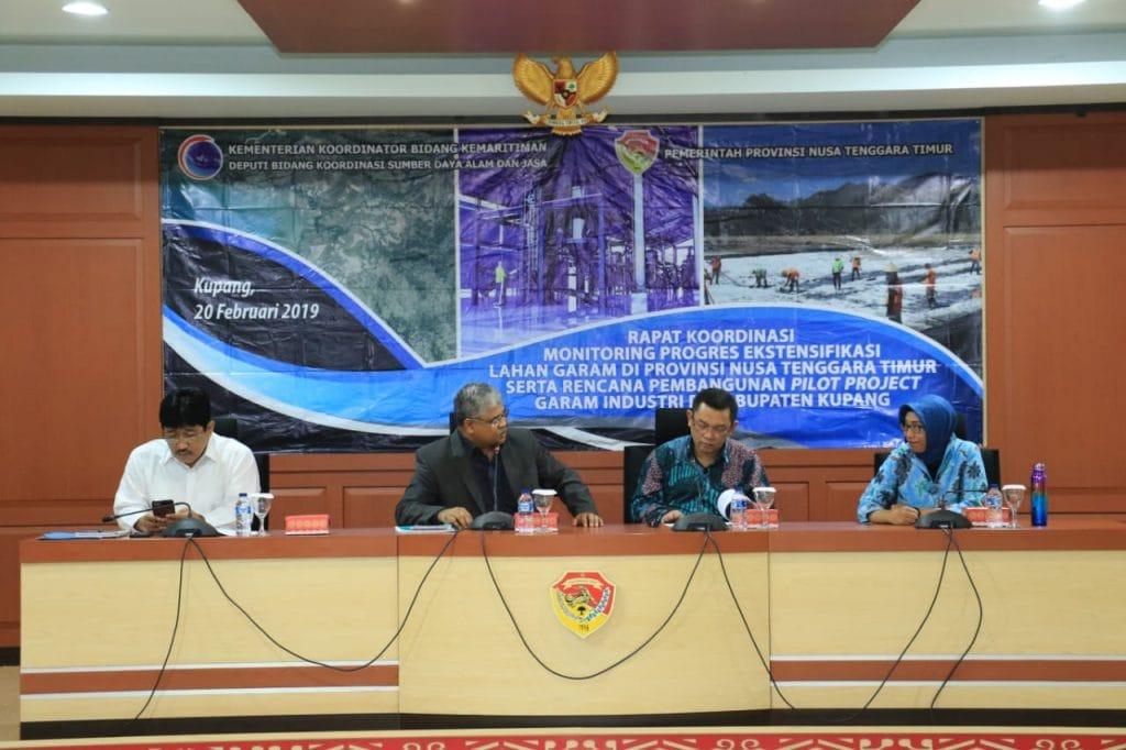 Kemenko Maritim Mengurai Tantangan Ekstensifikasi Lahan Garam Nusa Tenggara Timur