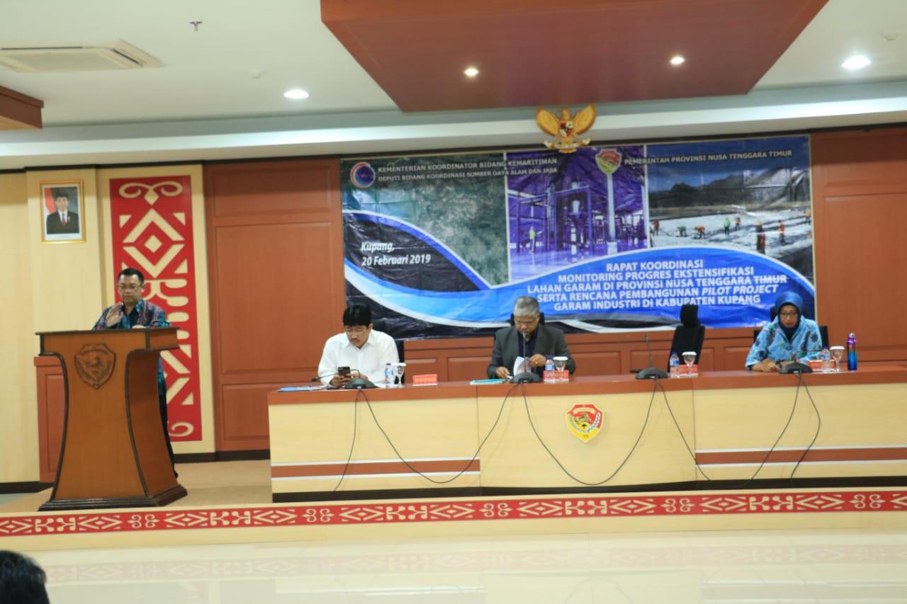 Kemenko Maritim Mengurai Tantangan Ekstentifikasi Lahan Garam Nusa Tenggara Timur