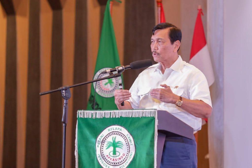 Menko Luhut : Pemerintah Berkomitmen Lindungi Petani, Industri sawit dan Menjaga Lingkungan
