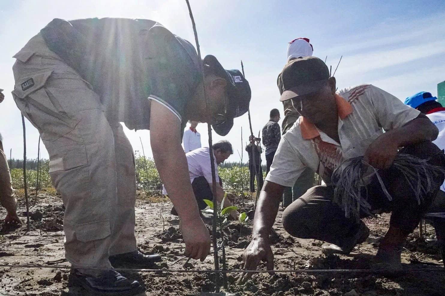 Berkunjung Ke Aceh, Deputi Agung Tanam 100 Mangrove