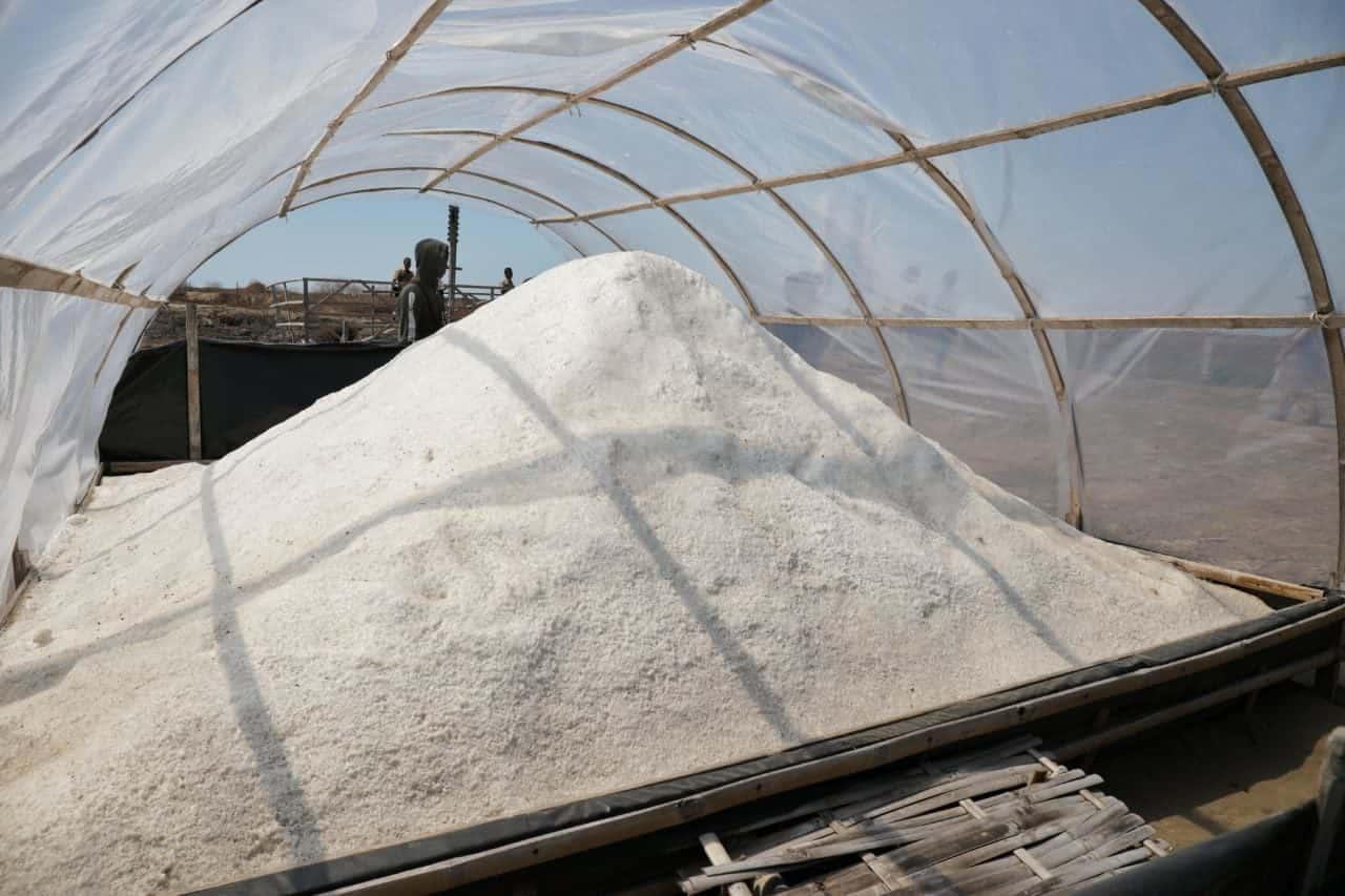Deputi Agung Tinjau Tambak Garam Di Bungko Lor, Cirebon