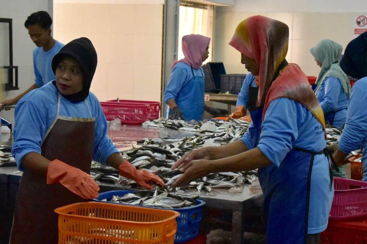 Deputi Bidang Koordinasi Sumber daya Alam dan Jasa Kunjungan ke Kawasan Industri Pengolahan Ikan.