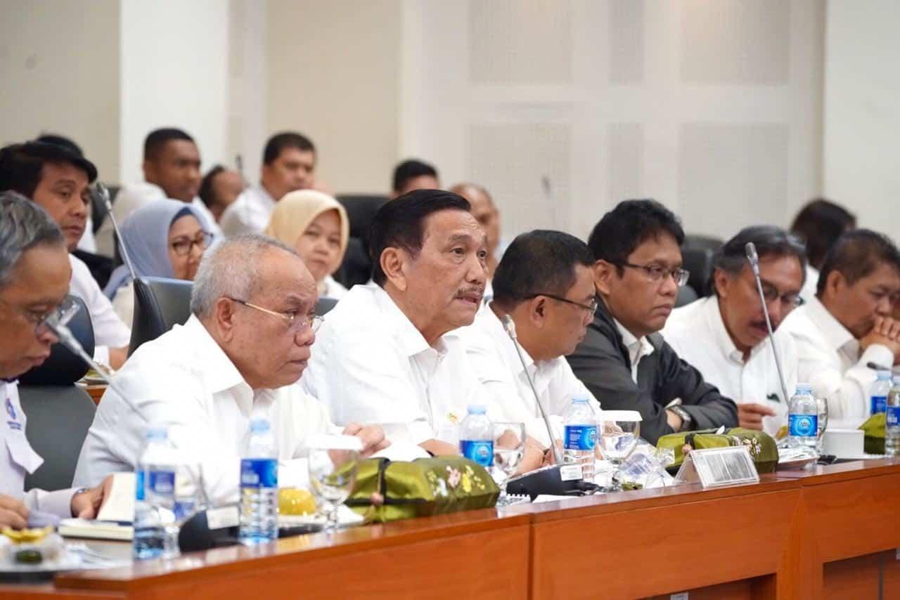 Menko Luhut: Perkembangan Investasi di Indonesia Patut Diapresiasi