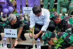 Tanam 300.074 Pohon Mangrove, Kemenko Maritim Bersama TNI Pecahkan Rekor Muri