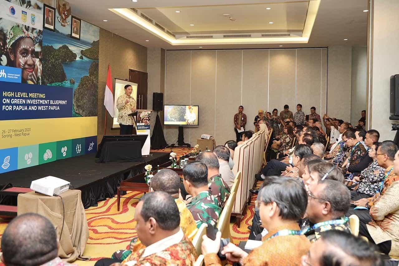 Menko Luhut Luncurkan Konsep Investasi Hijau untuk Papua dan Papua Barat