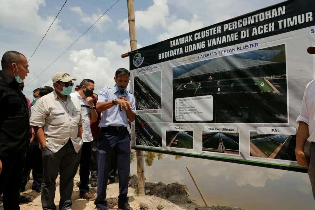 Kemenko Marves Sambangi Aceh Timur, Kejar Peningkatan Produksi Udang Nasional