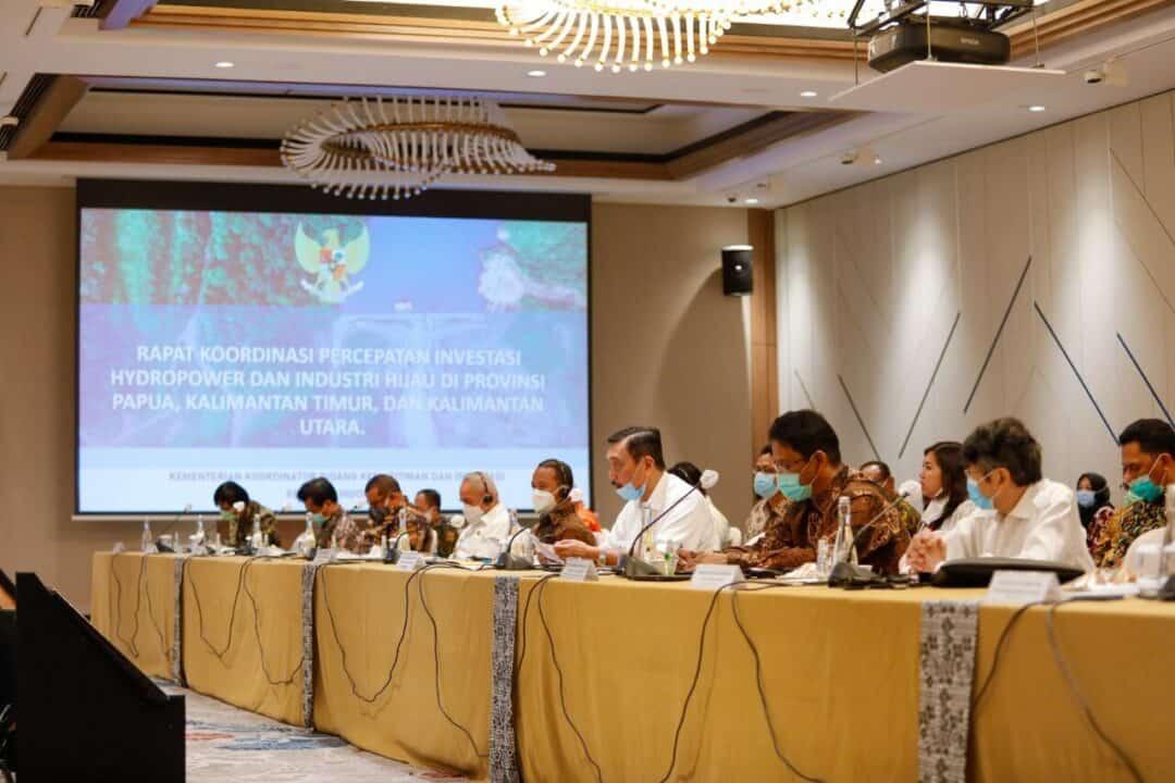 """Menko Luhut : """"Indonesia dan FMG Berkomitmen Mengembangkan Ekonomi Hijau"""""""