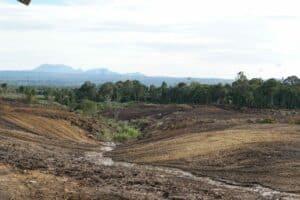Pemerintah Rencanakan 61.000 Ha Lahan di Sumut Jadi Kawasan Food Estate