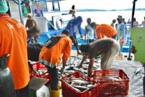 Upaya Pemerintah Tingkatkan Produksi Kelautan dan Perikanan di Maluku Utara