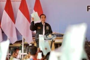 Menko Luhut Dampingi Presiden Jokowi Tinjau Kawasan Lumbung Pangan di Sumut