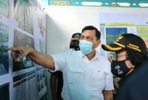 Jalankan Program PEN, Menko Luhut Targetkan 600Ha Mangrove Dalam 4 Tahun