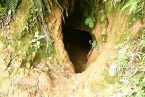 Pemerintah MonitorPenambangan Emas Tanpa Izin (PETI) di Wilayah Taman Nasional Gunung Halimun Salak