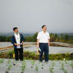 Menko Luhut: Kita Siap Kembangkan Food Estate Sumatera Utara Empat Tahun Ke Depan