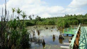 Menghela Geopark Belitung Mencapai SDGs, Pemerintah Ajak Kontribusi Generasi Muda Bangsa