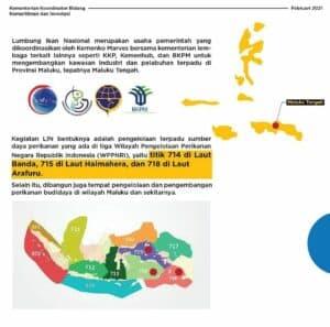 Provinsi Maluku Sebagai Lumbung Ikan Nasional (LIN