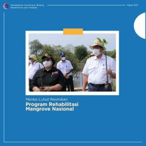 Peresmian Program Rehabilitasi Mangrove Nasional