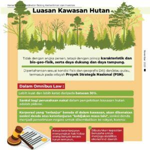 UU Cipta Kerja Kawasan Hutan