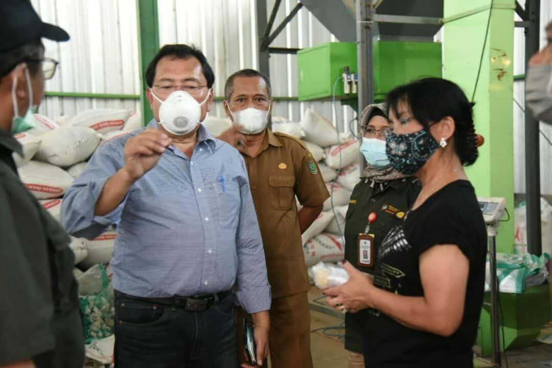 Lakukan Tinjauan Lapangan, Kemenko Marves Upayakan Optimalisasi Food Estate dari Hulu ke Hilir di Kalimantan Tengah