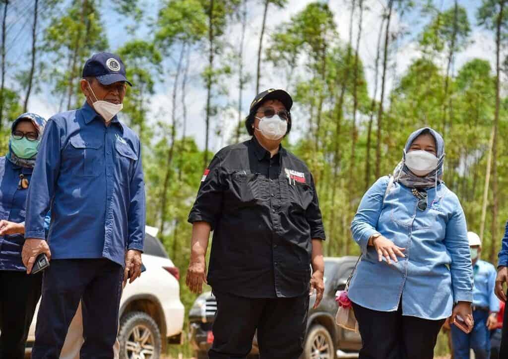 Wujudkan Percepatan Rehabilitasi Mangrove, Deputi PLK Kemenko Marves Lakukan Tinjauan Lapangan ke Bakal Lokasi Persemaian Mangrove Skala Besar