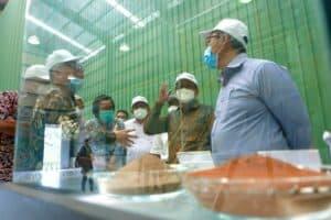 Kemenko Marves Dukung Pengembangan Teknologi STAL Untuk Pengolahan dan Pemurnian Nikel