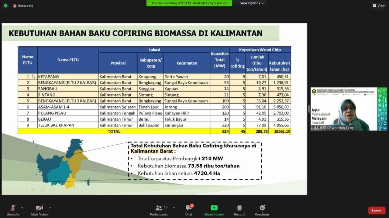 Kemenko Marves Kawal Pemanfaatan Energi Biomassa