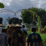 Kemenko Marves Koordinasikan Pengembangan Agrowisata Tamansuruh Banyuwangi